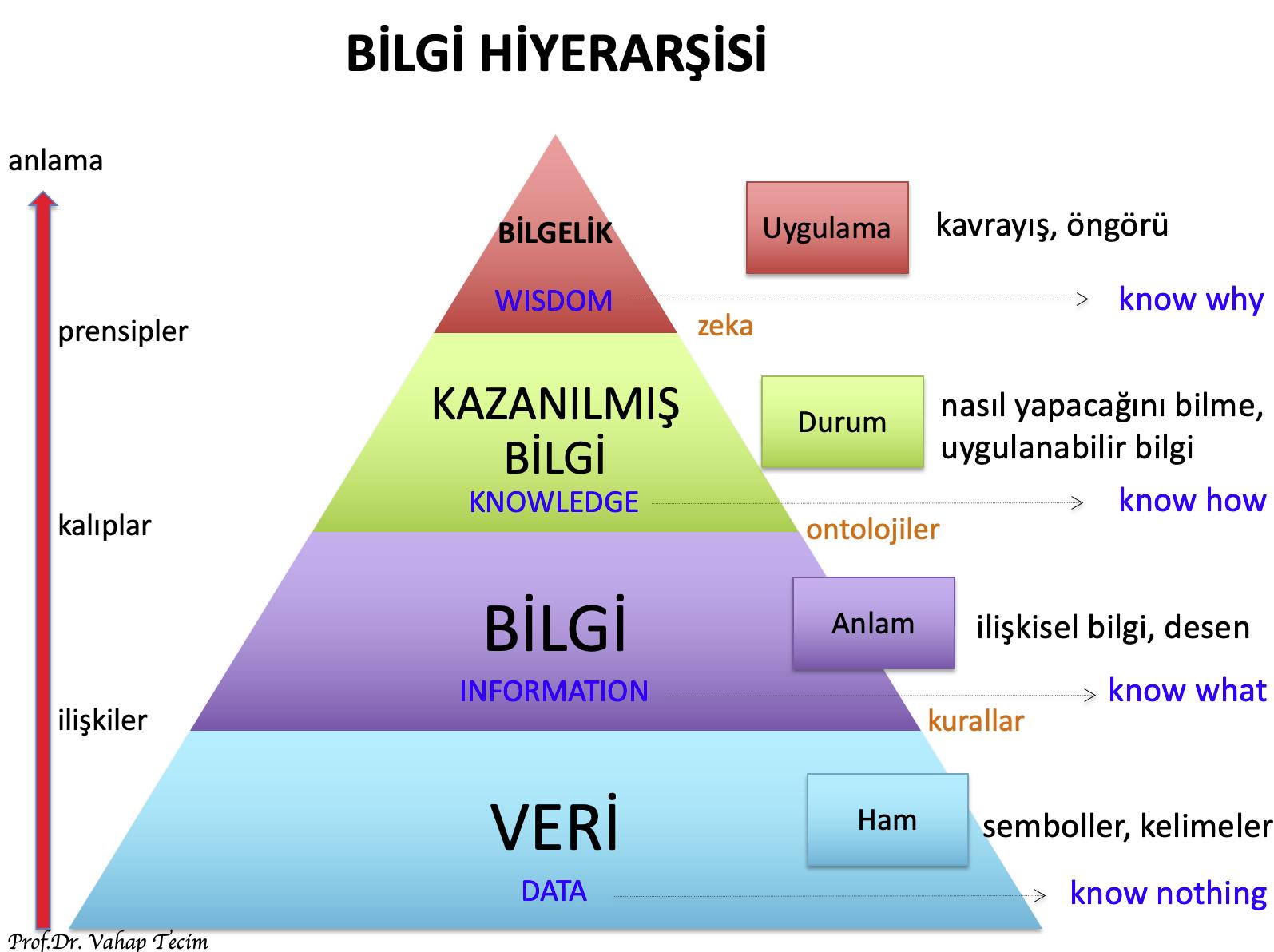 BilgiHiyerarşisi-1
