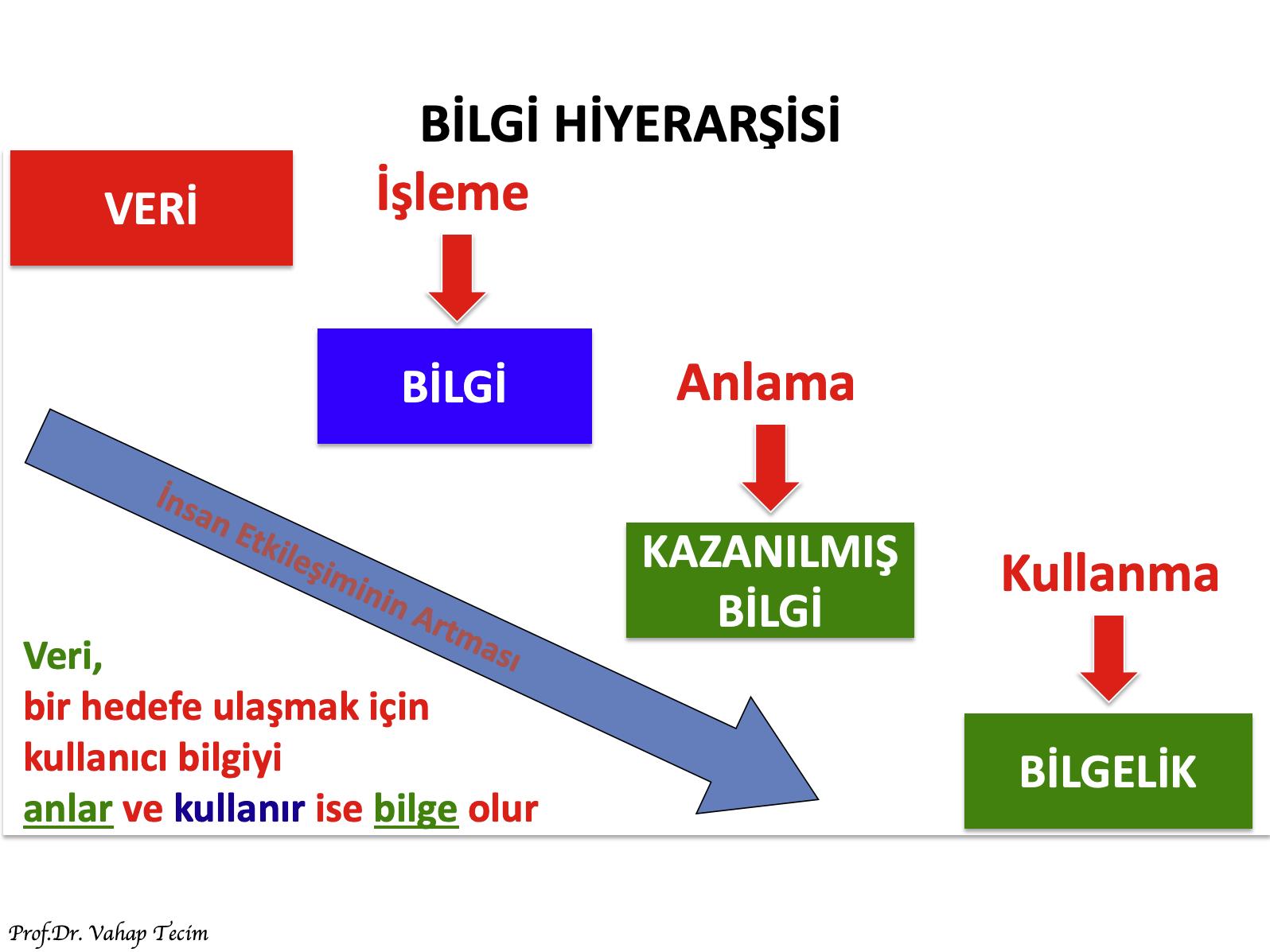 BilgiHiyerarşisi-3